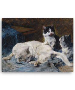 Julius Adam: Katzenmutter mit Zwei Katzchen, 1913, Canvas Cat Art Print at The Great Cat Store